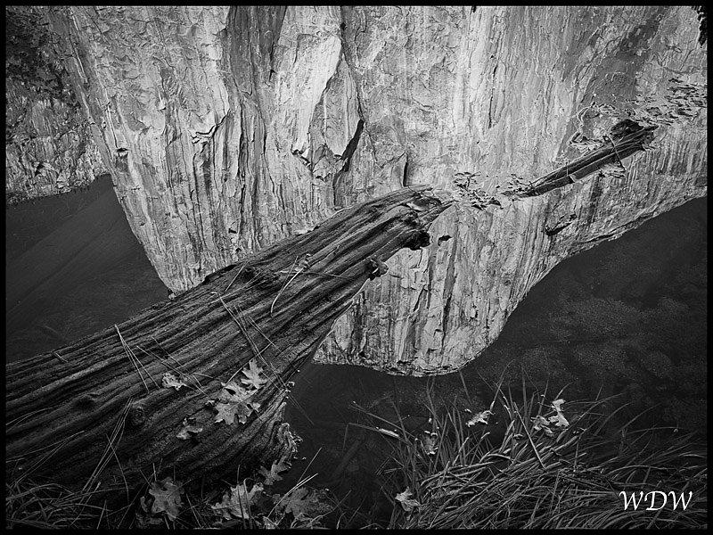 Yosemite-11-6-10-201-Edit-3.jpg