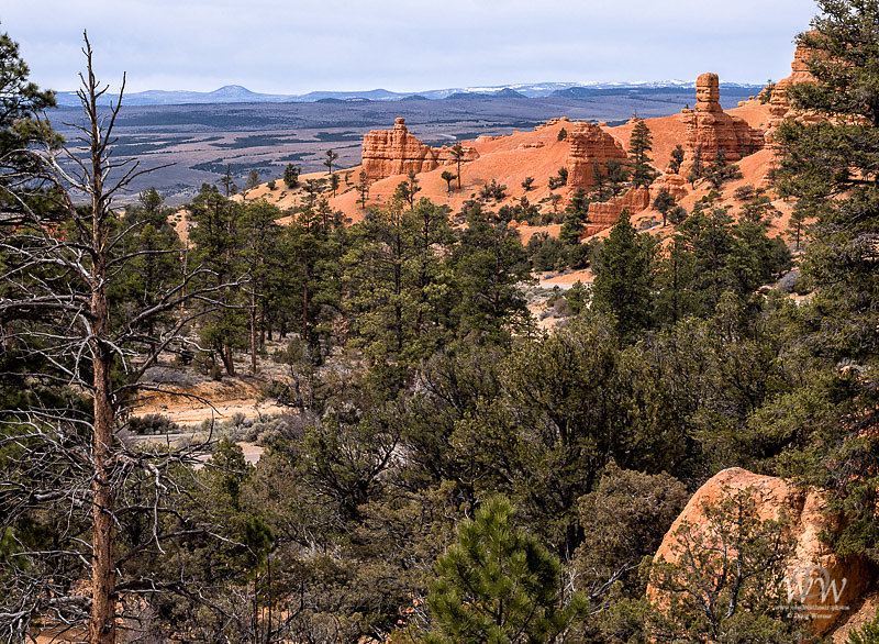 RedCanyon-4-4-13-87-Edit.jpg