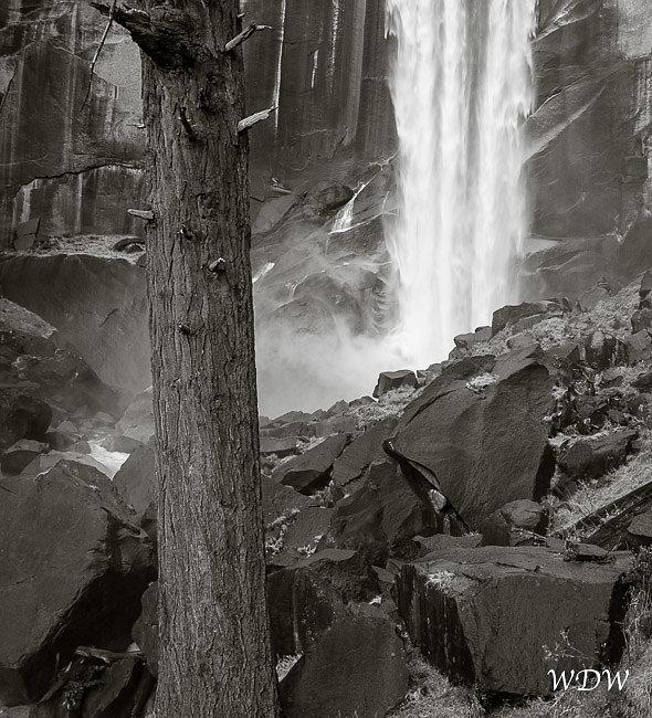 Yosemite-10-16-09-328.jpg