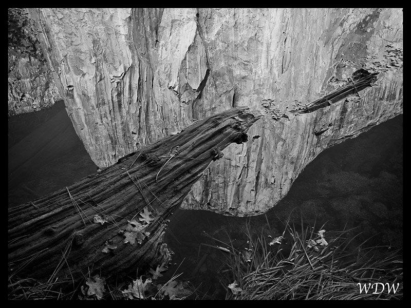 Yosemite-11-6-10-201-Edit.jpg