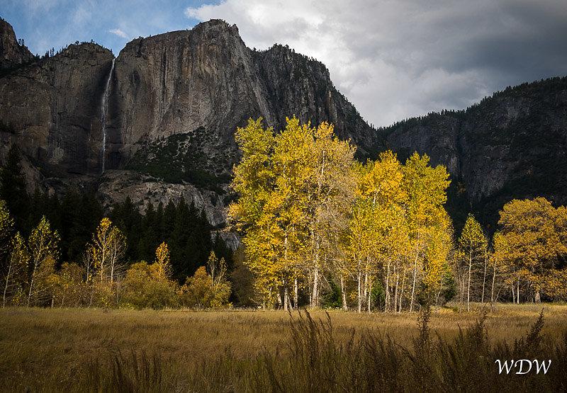 Yosemite-11-6-10-320.jpg