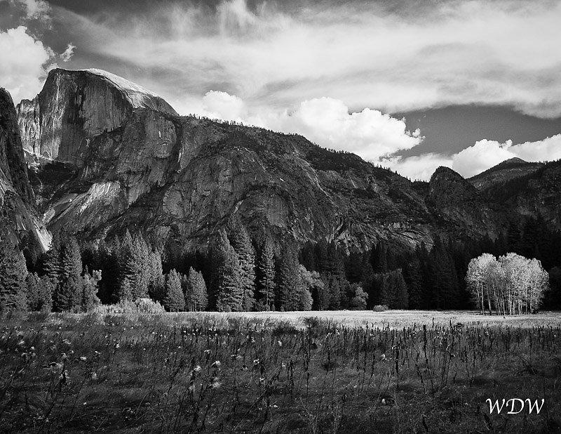 Yosemite-11-6-10-430-Edit.jpg