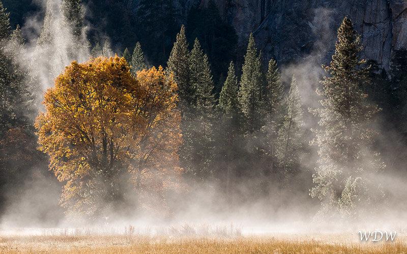 Yosemite-11-14-14-216-Edit.jpg