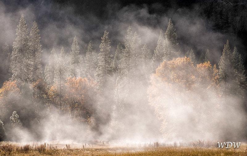 Yosemite-11-14-14-237-Edit.jpg