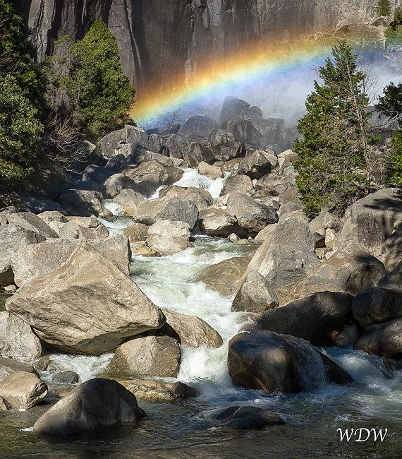 Yosemite-2-15-16-162.jpg
